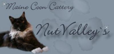 Nutvalleys maine coons